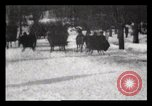 Image of Sleighs New York City USA, 1898, second 13 stock footage video 65675040624