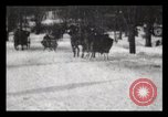 Image of Sleighs New York City USA, 1898, second 30 stock footage video 65675040624