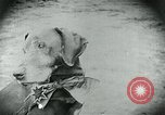 Image of food relief for Germany after World War 1 Germany, 1920, second 17 stock footage video 65675040647