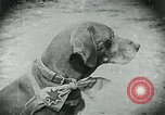 Image of food relief for Germany after World War 1 Germany, 1920, second 19 stock footage video 65675040647