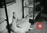 Image of various small curios Paris France, 1947, second 17 stock footage video 65675040653