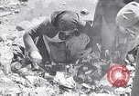 Image of German people Munich Germany, 1946, second 1 stock footage video 65675040673