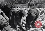 Image of German people Munich Germany, 1946, second 34 stock footage video 65675040673