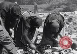 Image of German people Munich Germany, 1946, second 36 stock footage video 65675040673