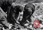 Image of German people Munich Germany, 1946, second 38 stock footage video 65675040673