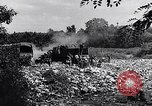 Image of German people Munich Germany, 1946, second 50 stock footage video 65675040673