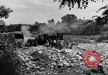 Image of German people Munich Germany, 1946, second 52 stock footage video 65675040673