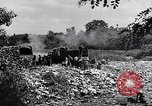 Image of German people Munich Germany, 1946, second 53 stock footage video 65675040673