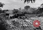 Image of German people Munich Germany, 1946, second 54 stock footage video 65675040673