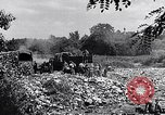 Image of German people Munich Germany, 1946, second 59 stock footage video 65675040673