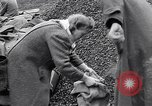 Image of German people gather fuel end World War 2 Munich Germany, 1945, second 29 stock footage video 65675040680