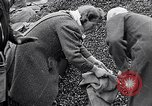Image of German people gather fuel end World War 2 Munich Germany, 1945, second 30 stock footage video 65675040680
