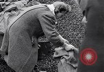 Image of German people gather fuel end World War 2 Munich Germany, 1945, second 33 stock footage video 65675040680