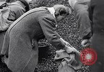 Image of German people gather fuel end World War 2 Munich Germany, 1945, second 34 stock footage video 65675040680