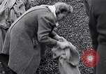 Image of German people gather fuel end World War 2 Munich Germany, 1945, second 36 stock footage video 65675040680