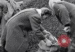 Image of German people gather fuel end World War 2 Munich Germany, 1945, second 37 stock footage video 65675040680