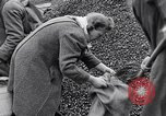 Image of German people gather fuel end World War 2 Munich Germany, 1945, second 38 stock footage video 65675040680