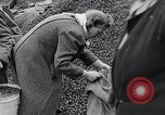 Image of German people gather fuel end World War 2 Munich Germany, 1945, second 39 stock footage video 65675040680