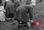 Image of German people gather fuel end World War 2 Munich Germany, 1945, second 56 stock footage video 65675040680