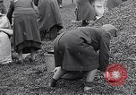 Image of German people gather fuel end World War 2 Munich Germany, 1945, second 57 stock footage video 65675040680