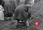 Image of German people gather fuel end World War 2 Munich Germany, 1945, second 58 stock footage video 65675040680