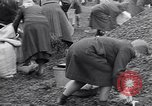 Image of German people gather fuel end World War 2 Munich Germany, 1945, second 61 stock footage video 65675040680