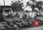 Image of Impact of flood Formosa Taiwan, 1959, second 16 stock footage video 65675040725