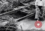 Image of Impact of flood Formosa Taiwan, 1959, second 19 stock footage video 65675040725