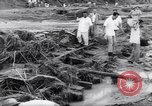 Image of Impact of flood Formosa Taiwan, 1959, second 21 stock footage video 65675040725