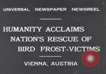 Image of swallows Vienna Austria, 1931, second 1 stock footage video 65675040738