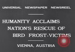 Image of swallows Vienna Austria, 1931, second 2 stock footage video 65675040738