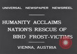 Image of swallows Vienna Austria, 1931, second 5 stock footage video 65675040738