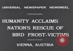 Image of swallows Vienna Austria, 1931, second 9 stock footage video 65675040738