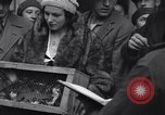 Image of swallows Vienna Austria, 1931, second 24 stock footage video 65675040738