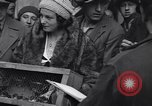 Image of swallows Vienna Austria, 1931, second 25 stock footage video 65675040738