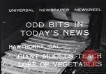Image of Giant models of vegetables Hawthorne California USA, 1932, second 11 stock footage video 65675040751