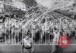 Image of Invasion of Sicily Italy, 1943, second 9 stock footage video 65675040765