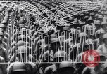 Image of Invasion of Sicily Italy, 1943, second 14 stock footage video 65675040765