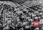Image of Allied troops take Anzio from Axis Anzio Italy, 1944, second 14 stock footage video 65675040786