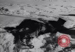 Image of Winter sports North Atlantic Ocean, 1944, second 17 stock footage video 65675040793