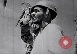 Image of Fervently patriotic Japanese people Pacific Theater, 1945, second 39 stock footage video 65675040811