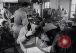 Image of Flying tigers China, 1942, second 34 stock footage video 65675040845