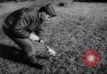 Image of atomic bomb accidentally dropped Florence South Carolina USA, 1958, second 56 stock footage video 65675040882