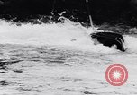Image of Kayak skippers Germany, 1956, second 37 stock footage video 65675040938