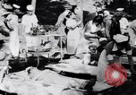 Image of Earthquake Aegean Islands Greece, 1956, second 38 stock footage video 65675040952