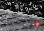 Image of Swimming championship Tyler Texas USA, 1956, second 27 stock footage video 65675040957