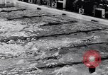 Image of Swimming championship Tyler Texas USA, 1956, second 52 stock footage video 65675040957