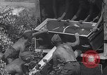 Image of Luftwaffe aircraft operations Eastern Front, 1941, second 11 stock footage video 65675041021