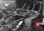 Image of Luftwaffe aircraft operations Eastern Front, 1941, second 12 stock footage video 65675041021