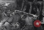 Image of Luftwaffe aircraft operations Eastern Front, 1941, second 14 stock footage video 65675041021